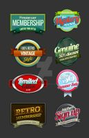 8 Retro Vintage badges 2 by SneekDigital