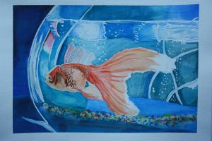 Fish in a Bowl watercolor by Auzureii