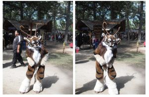 The Feline Furre At Faire by PoldalleLovesnare