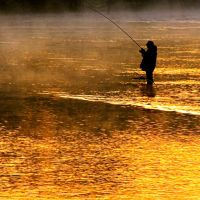 Fishing by Capturing-the-Light