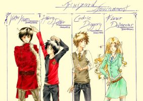 _HP:TriwizardChampions_ by Aeris1990