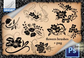 Flowers Brushes R33 by roula33