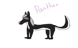 Panther by AutumnMiracles