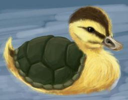Avatar: Turtle Duckling Doodle by justira