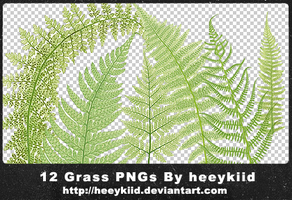 12 Grass PNGs By heeykiid by heeykiid