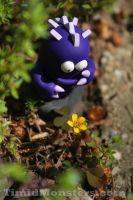 Timid Monsters in the Wild - 2 by TimidMonsters