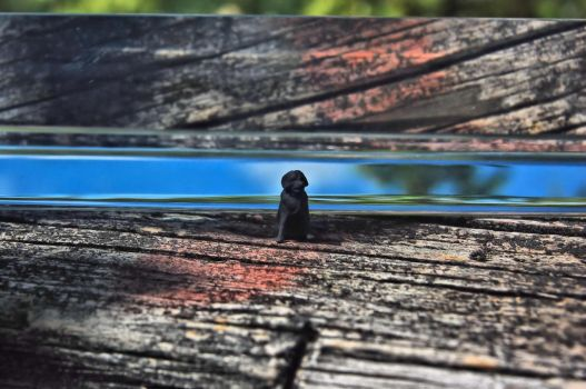 Guard Dog by WildSwamp