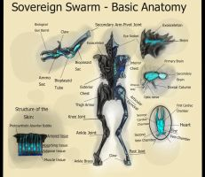 Request - Sovereign Swarm Basic Anatomy by SwarmCreator