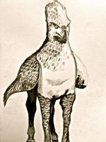 Buckbeak by JadedDreams1