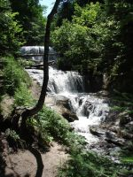 Sable Falls by Westminister