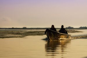 In the Danube Delta by rhipster