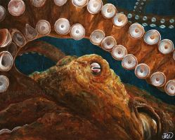 Giant Pacific octopus by odontocete