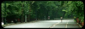 runnin' in the park by Titareco