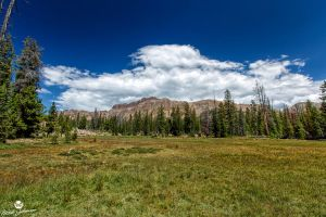 Hayden Peak and the Meadow by mjohanson