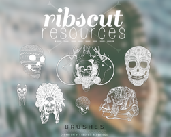 Skull Brushes by ribscut