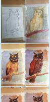 Traditional Painting: Owl Wips by Grainicus