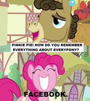 How does Pinkie Pie remember everything by SteGhost