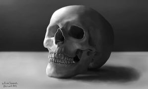Digital Painting Skull Still Life Practice by xKimJoanne