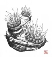 Wiwaxia by aaronjohngregory