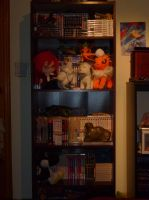 Manga/Anime Collection - AN 2013 by Stealfang-FP