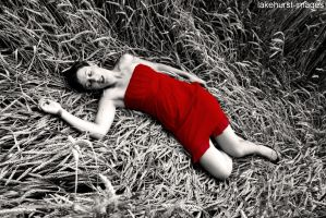 Fainted in a field of corn by lakehurst-images
