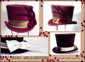 More mini Wellingtons by Elemental-Sight