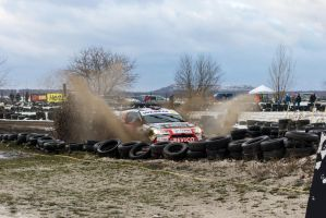 Barborka Rally 2013 - Bemowo, Warsaw by dragonslay3r