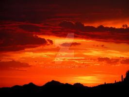 Arizona Sunset L by AletheaDo
