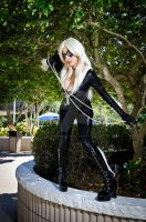 Shadocon 2011 Photos By Don Smith by RiyoMitsukiModeling