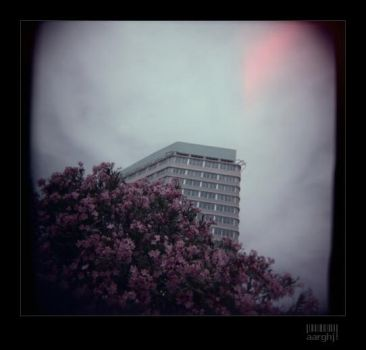 holga.all that never was by aarghj