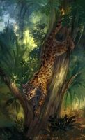 Margay by O-l-i-v-i