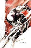Wolverine Slash by Cinar