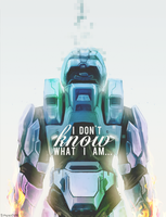 RVB - What I am by Synnesai