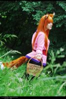 Spice and Wolf - Horo 18 by namstar91