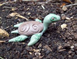 Turtle by Eldessia