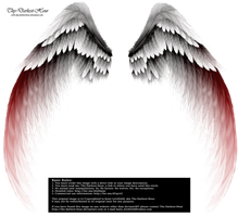 Arch Angel Wings - Red Tinge by Thy-Darkest-Hour