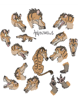Andrewsarchus expression sheet by Kaaziel