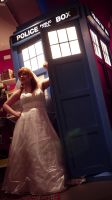 Donna and Tardis by Glasmond