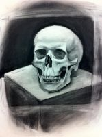 Skull on a box by Saber-Cow