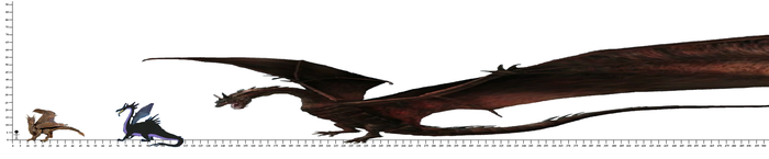 Favorite Dragon Size Comparison by DinoNTrains
