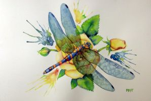 Dragonfly on a Yellow Rose by AKGirlGamer