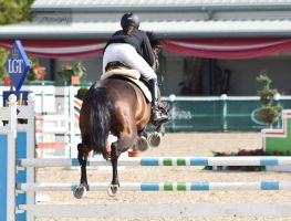 OESTM Jumping_3 by CalyHoney