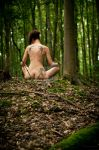 In the woods by fholger