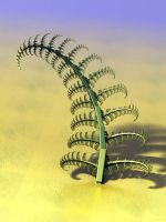 Fern Mechanics by batjorge