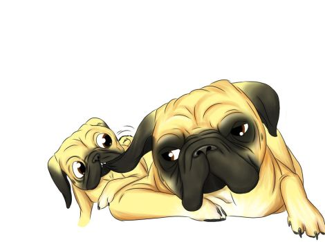 Ugly pugly by assassinness