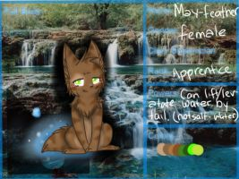 StreamClan app Mayfeather by DustyKatt