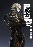 MGR:R Raiden by olivia730