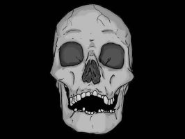 front view skull by flawpunk