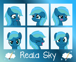 MLP OC Expressions : Reala Sky by outlaw4rc