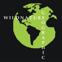WILDNATURE GEOGRAPHIC ( All Rights Reserved 2013 ) by Sketching-Sketches